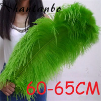 Newsoft and Fuffly 24 26'' 60 65cm 20pcs/lot Green Ostrich Plumages Non static Wipe Electronic Equipment Ostrich Feather Plumes