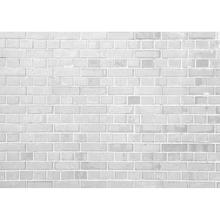 Off White Brick Wall Vinyl Photo Backgrounds Photographic Backdrops For Backgrounds for Children Baby Photo Digital Photo Studio