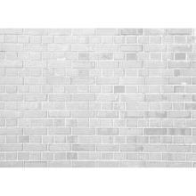 Off White pared de ladrillo vinilo foto fondos fotográficos para fondos para niños bebé foto estudio de fotografía Digital