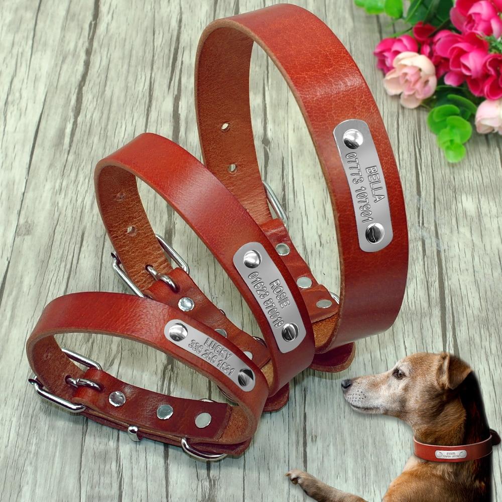 Metal Dog Collar Plate