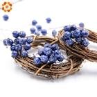 50pcs/lot BlueBerry ...