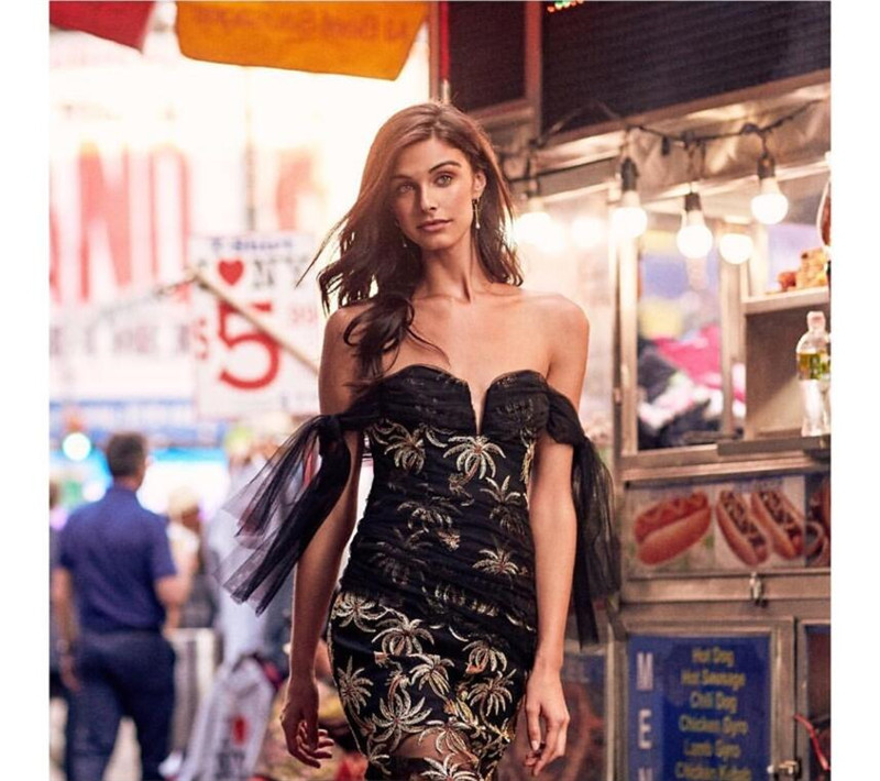 2019 summer black color flare sleeve embroidery mini dress