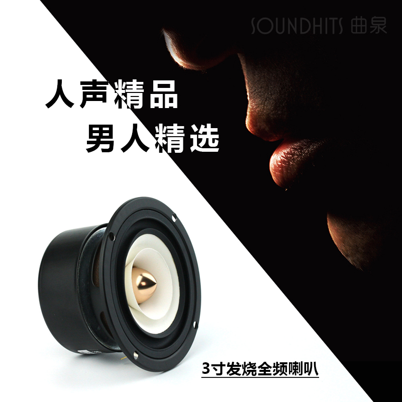 Image 3 - 2PCS/LOT Sounderlink 3'' Full Range frequency Speaker 3 inch 90MM unit with aluminum bullet head-in Subwoofer from Consumer Electronics