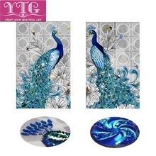 YTG New 2017 5D DIY Special-Irregular Diamond Painting Crafts Peacock Animal Needlework Embroidery Cross Stitch Room Decoration
