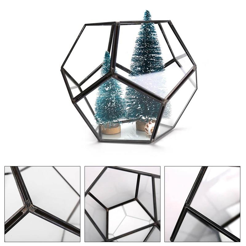 Modern Geometric Pentagon Ball Shape Open Glass Display Terrarium Box Fern Moss Succulent Plants Container Planter Flower Pots