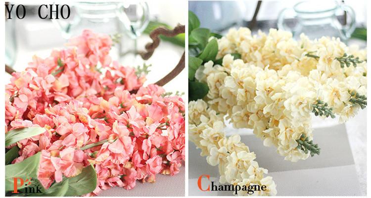 Larkspur hyacinth Snapdragon flower11