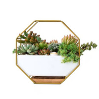 Nordic Minimalist Octagonal Geometric Wall Hanging Table Succulents Ceramic Flower Pot Bamboo Tray Iron Frame Set Crafts Gifts