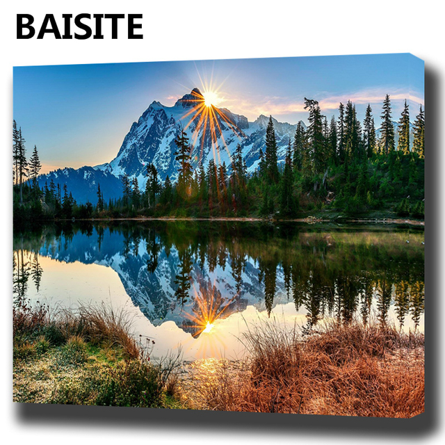 BAISITE DIY Framed Oil Painting By Numbers Flowers Pictures Canvas Painting For Living Room Wall Art Home Decor E927