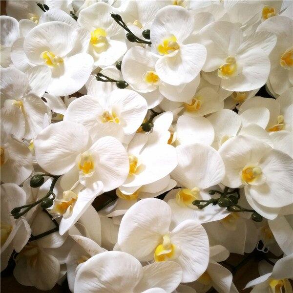 5 قطعة الأبيض ريال اللمس فراشة السحلية فالاينوبسيس بولي orبساتين الفاكهة 9 رؤساء ل تحف الزفاف الزهور الاصطناعية الزخرفية
