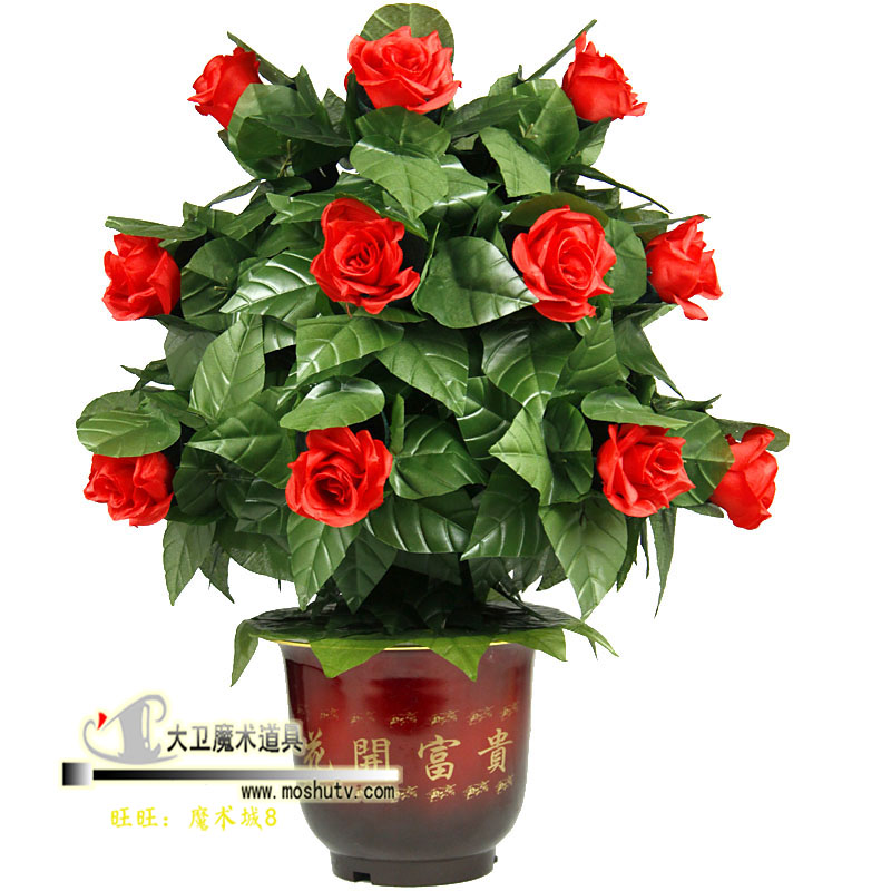 Floraison Rose Bush-télécommande-fleurs 10/20/30, tours de magie, mentalisme, comédie, accessoires de scène magia, Party Magia Show, Illusion - 4