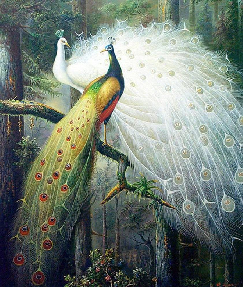 Sada pro vyšívání, kutilství pro vyšívání, vyšívací souprava, lesní láska pár pták páv tisknout vzor Hedvábný křížový steh zvířecí výzdoba