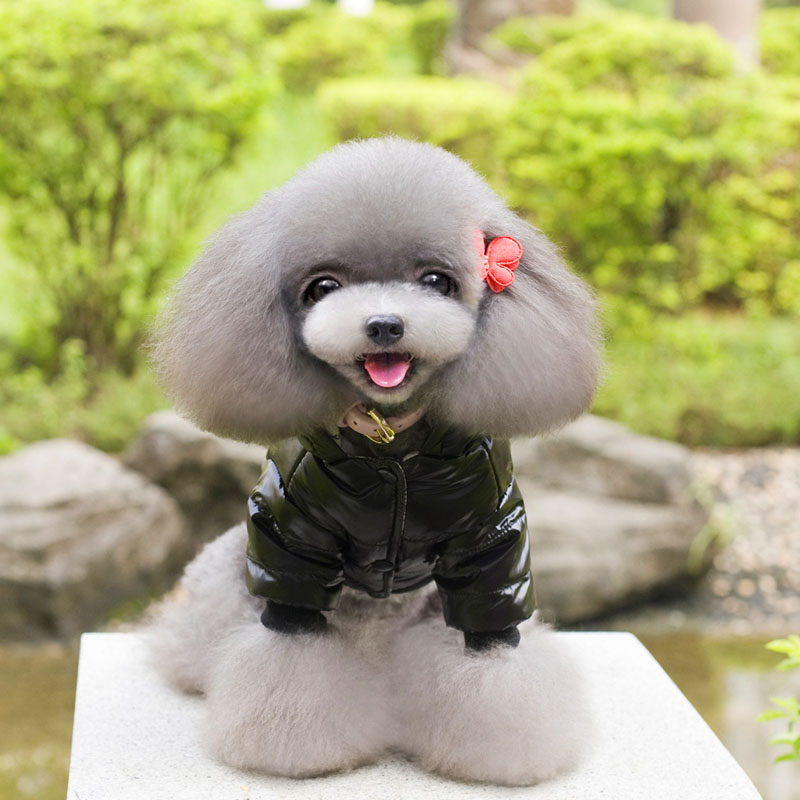 2017 autumn winter pet clothes high-quality cotton casual dogs pets clothing Cute cartoon panda Thicken cotton Hooded Dog coat