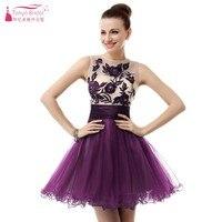 Short Homecoming Dresses 2018 Illusion Tulle Dress for graduation Sleeveless Short Mini vestido de festa DQG078