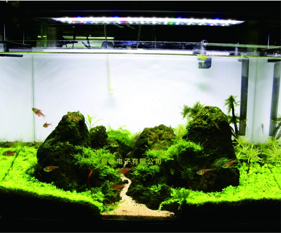 36w led aquarium light 72leds dimmable acuario light for for Discount aquarium fish and reef