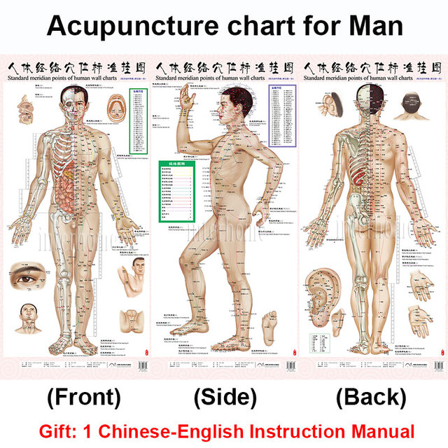 Standard meridian acupuncture points chart and zhenjiu moxibustion