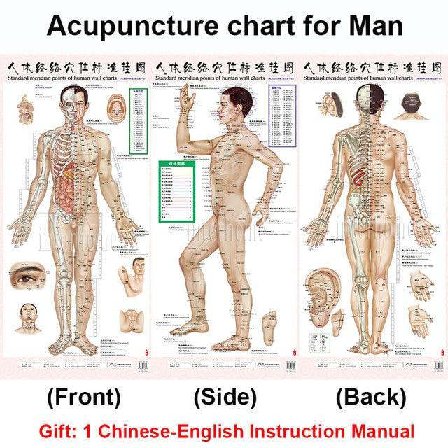 Acupuncture Meridians Diagram - Residential Electrical Symbols \u2022