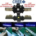 50pcs Solderless Cree XTE Led lamp 455nm Royal Blue Solderless CREE XPG led bulb 8500K White For Coral Fish Tank Led Light