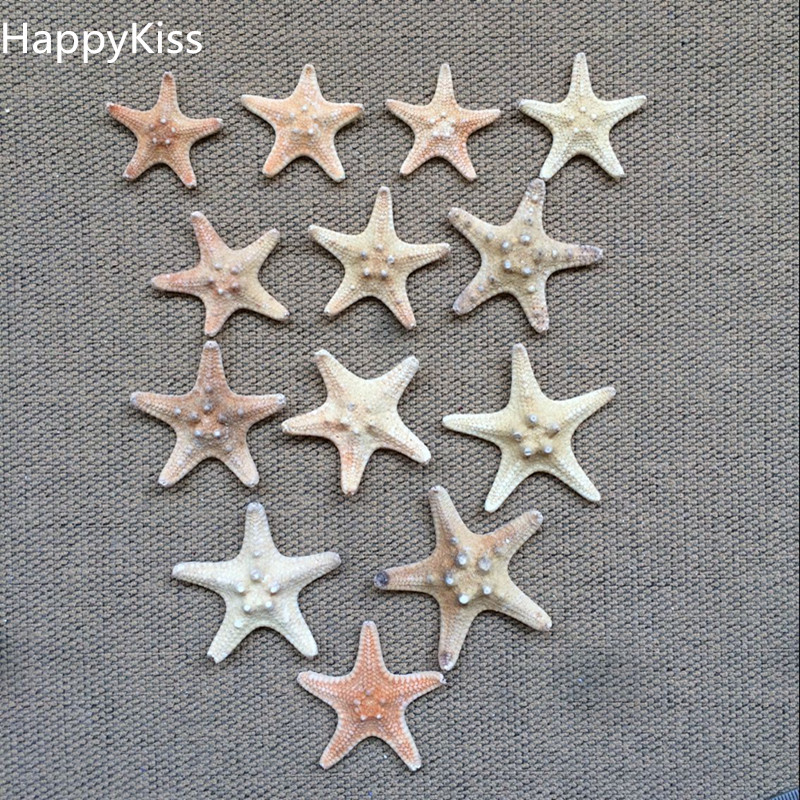 20Pcs/set Sea Star Star Fish Animal Shell Beach Ornament For Aquarium Weddings Party DIY Home Decoration Craft 3-4cm Starfish
