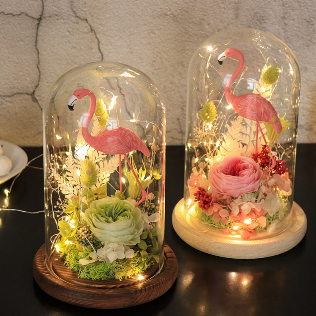 Klarglas Display Dome Abdeckung Cloche Bell Jar Sukkulenten Terrarien mit