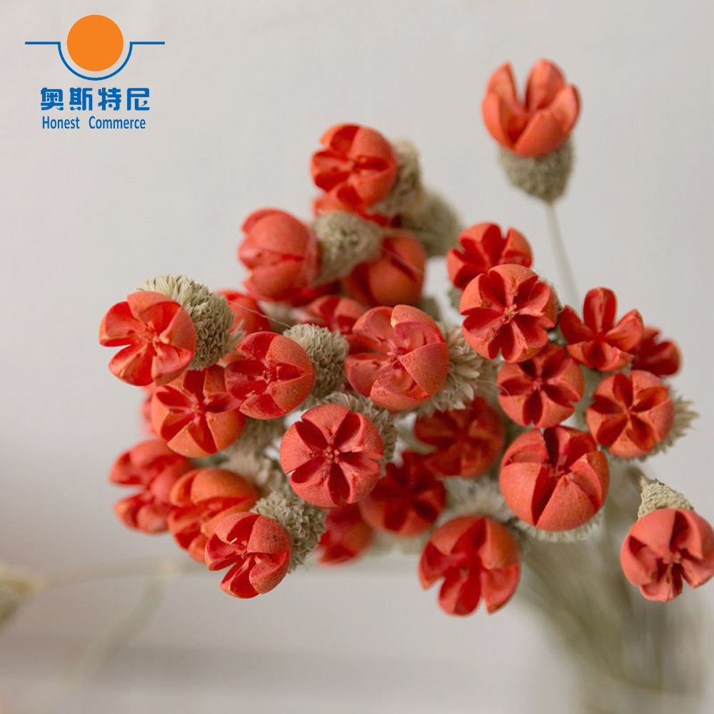 15pcs natural dried flower bouquets dried Crape Myrtle ...