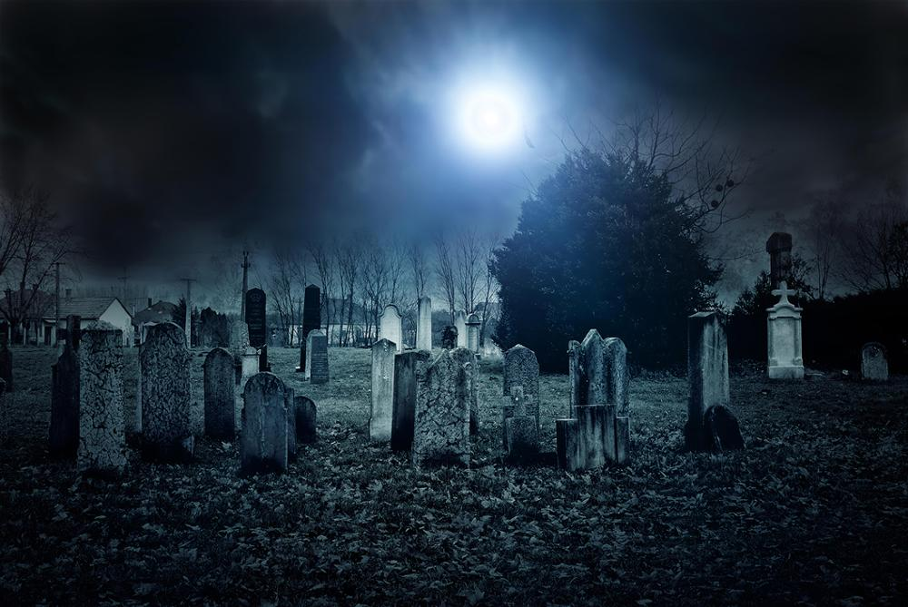 Dephoto Creepy Cemetery Background Moonlight Scary Gravestone Halloween Party Photography Backdrops Photo Studio Props in Background from Consumer Electronics