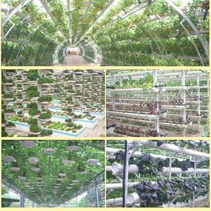 Image 4 - Square Sponge Soilless Hydroponics Garden Propagate Germination Container Planting Pot Bean sprouts Nursery Seedling Sponge Pot