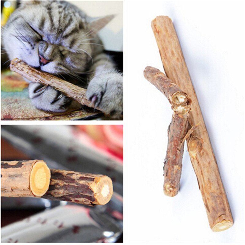 2pcs Cat Supplies Cat Molar Tooth Cleaning Stick Sewing Natural Wood Days Catnip Cat Snacks Pet Treats Accessories #3