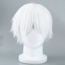 Tokyo Ghoul Cosplay Hairs Short Straight Silver Gray Color Silk Synthetic Hair 2