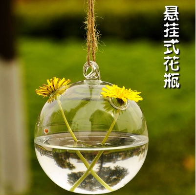 875783beb Moda mousse cristal transparente vaso de vidro arremessando hidropônico  flor casa 8 cm