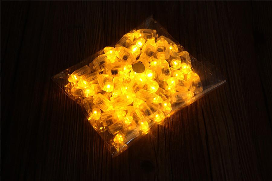 Balloon Lights (6)