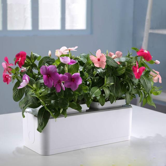 Mini Smart Garden Tomato/Fruit/Flower Pot High Quality Table Sill Balcony  Garden Planters