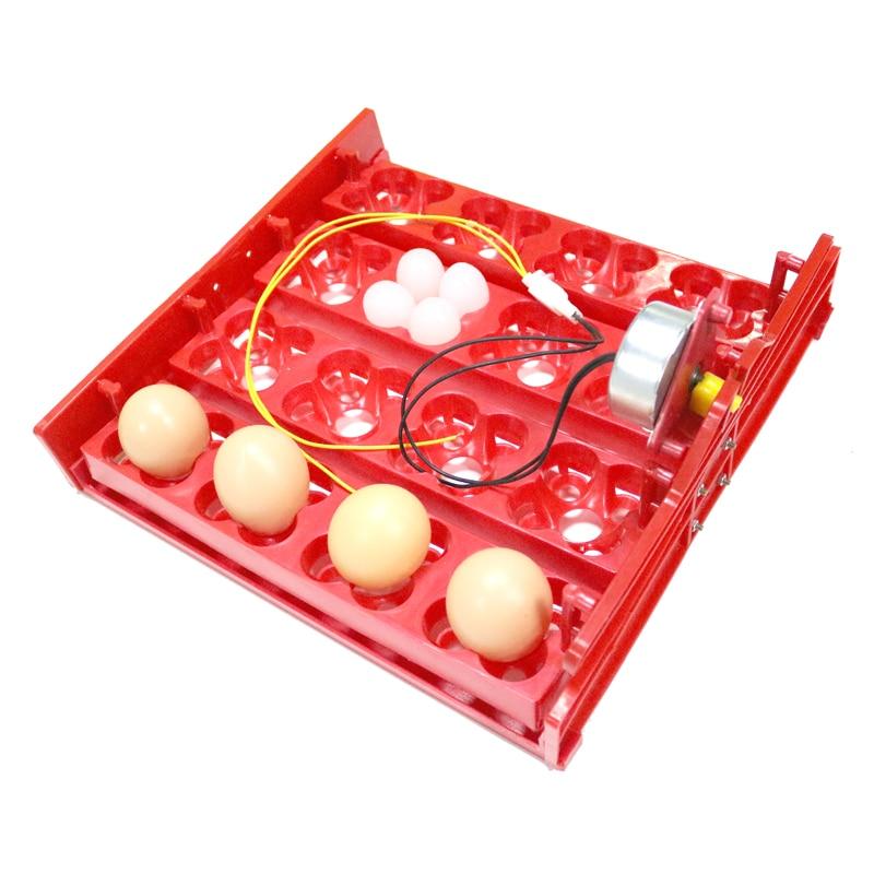 16 Курячі яйця 64 Перепелині яйця - Продукти для домашніх тварин - фото 4