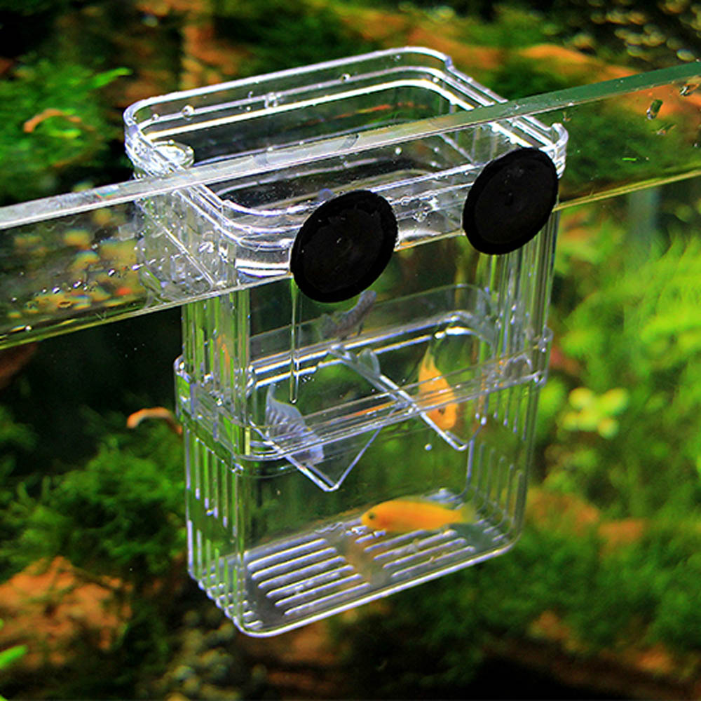 Multifunctional Acrylic Aquarium Incubator Box Fish Breeding Isolation Hatching Box Fish Tank Transparent Fish Breeding Box ...