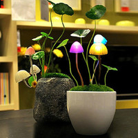 Creative Mushroom Rose Colorful Light Sensor Sensitive Night Light Lamp Decoration For Baby Kids Children Bedside