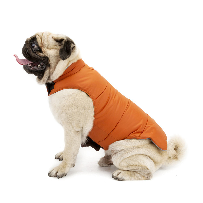 Dog Clothes for Large Dogs (13)
