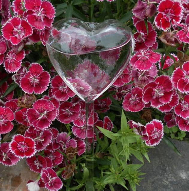 Стеклянные растения, цветы, кормушка для воды, самополивающаяся птица, дизайн, растение, водонагреватель, 6 видов - Цвет: as picture shown4