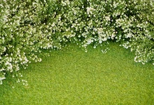 Laeacco Green Blossom Flower Lawn Grass Baby Child Scenic Photo Backgrounds Customized Photography Backdrops For Photo Studio 10x10ft 3x3m scenic muslin backgrounds photography photo studio backdrops hand painted flower muslin backdrop wedding