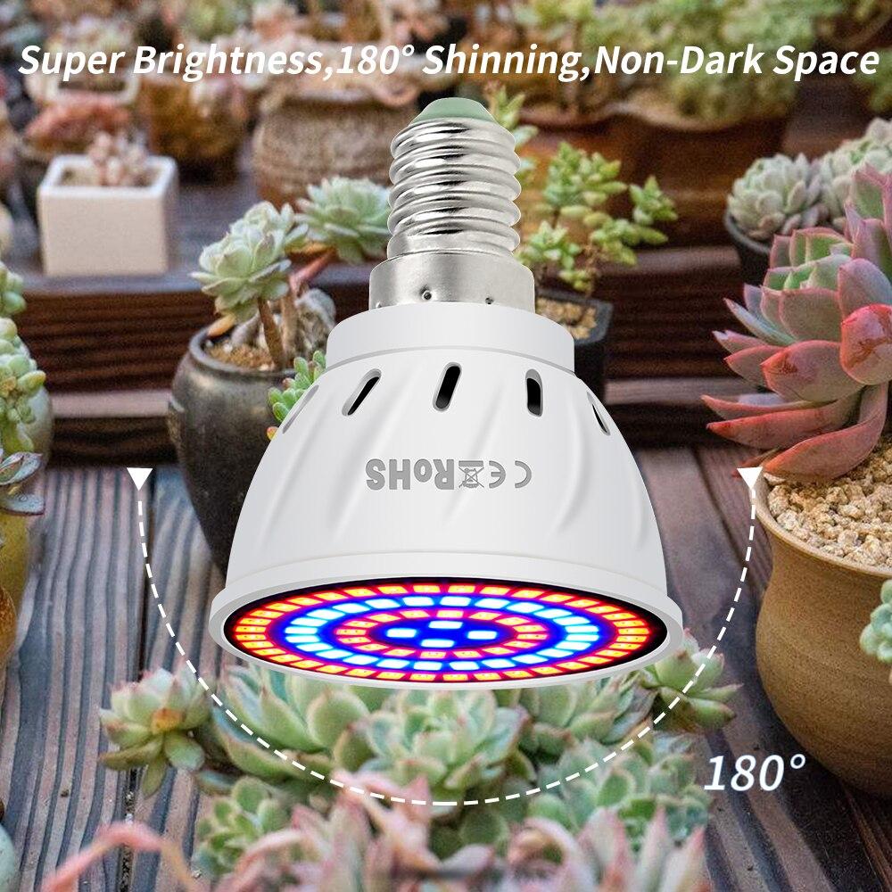 Image 5 - GU10 Phyto Lamps E27 Led Full Spectrum Grow Light MR16 Led Bulbs Seedling 48 60 80leds B22 Plant Growing Lamp For Greenhouse E14-in LED Grow Lights from Lights & Lighting