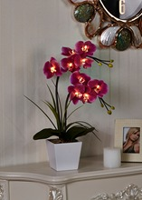 Free Shipping 20″ (50cm) LED Blossom Orchid Flower Light 9PCs WarmLED with 2*AA Battery pot , 9 Blossom Orchid Flowers with buds
