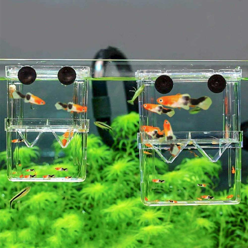 Kampf Fische Tank Zucht Schwimm Isolation Brüterei Fisch Tank Aquarium Rasse Box mit 3 stücke Pasteur Pipette für Aquarium Tank