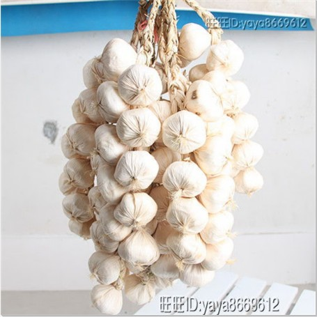 Big white garlic artificial vegetable fake vegetables