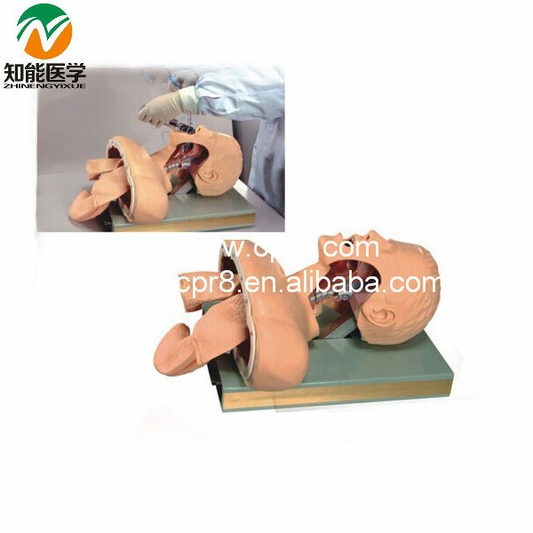 BIX-J51 Medical Education Alarm Device Trachea Intubation Manikin W079 bix lv10 medical education training