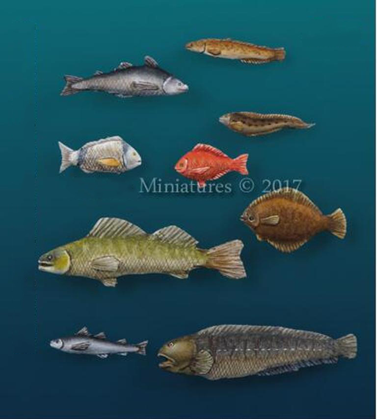 Assembly Unpainted  Scale 1/35 Modern Animals Set #  Modern New Coming    Historical Toy Resin Model Miniature Kit
