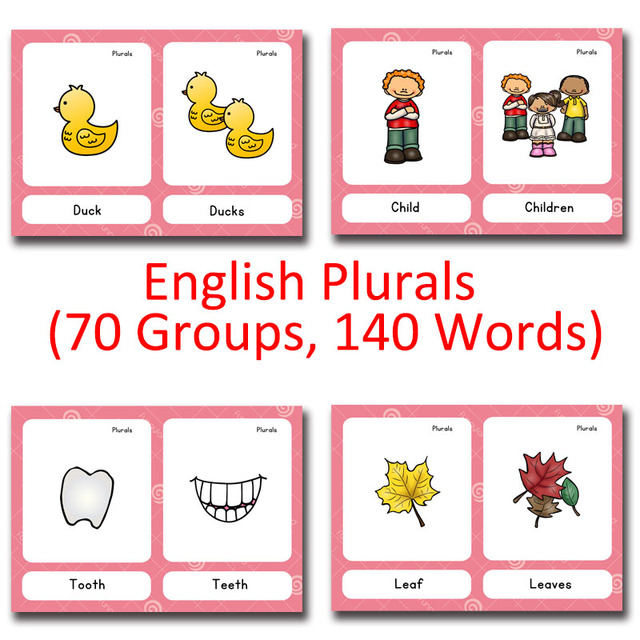 70 Groups Noun plural Montessori English Word Pocket FlashCards Game - flash cards words