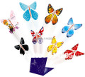magic surprising flying butterfly especially suit card or wedding invitation card-Free shipping