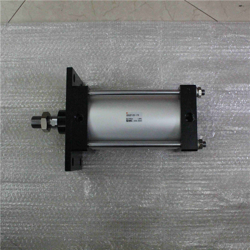 CDS2F125-175 SMC standard cylinder paroles lab cds