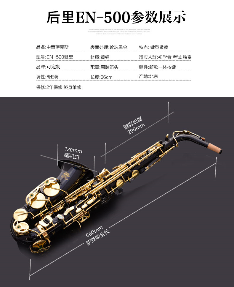 Brass Engraved Eb E Flat Alto Saxophone Sax Abalone Shell Buttons Wind Instrument with Case Gloves Cleaning Cloth Belt Brush - 3