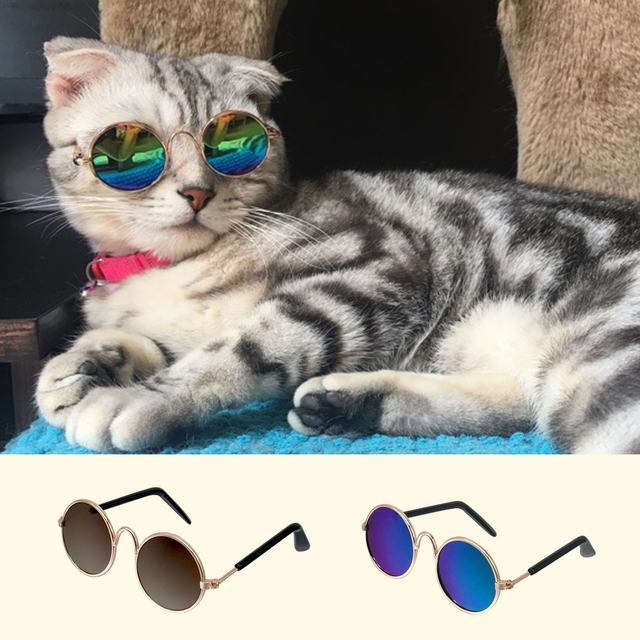 Summer Cat Sunglasses Pet Accessories Dogs Cats Glasses Grooming Eye  Protection Pet Cool Glasses Pet Photos Props 41f91fb32d48