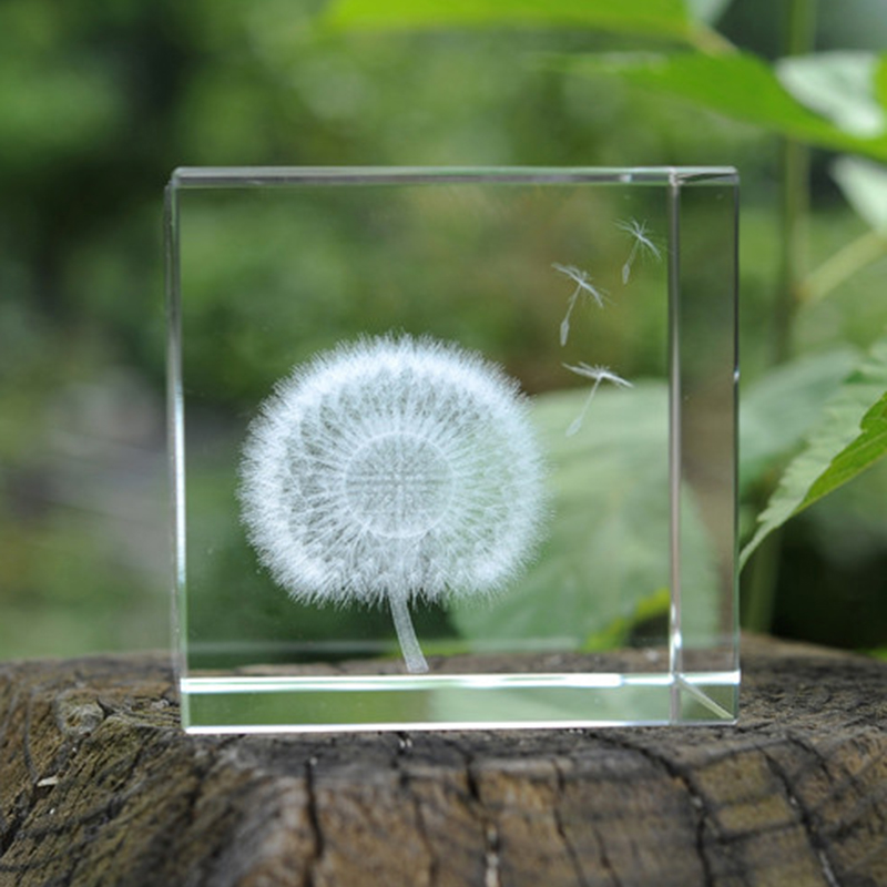 Crystal Ball 3D Plant Dandelion Specimens Creative And Practical Wedding Gifts Home Decorations Valentine 39 s Day Figurines in Figurines amp Miniatures from Home amp Garden