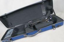 цены Excellent blue color,strong,hard fiberglass 4/4 violin case MA #6768